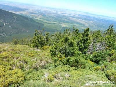 Cuerdas de La Pinilla y Las Berceras; senderismo joven madrid, ruta senderismo madrid;viajes noviemb